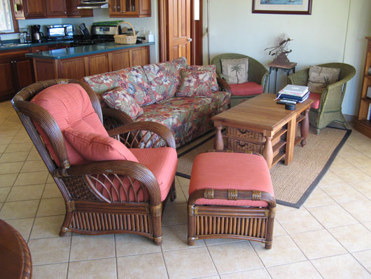 Living room / Great room at Caneel Trailside